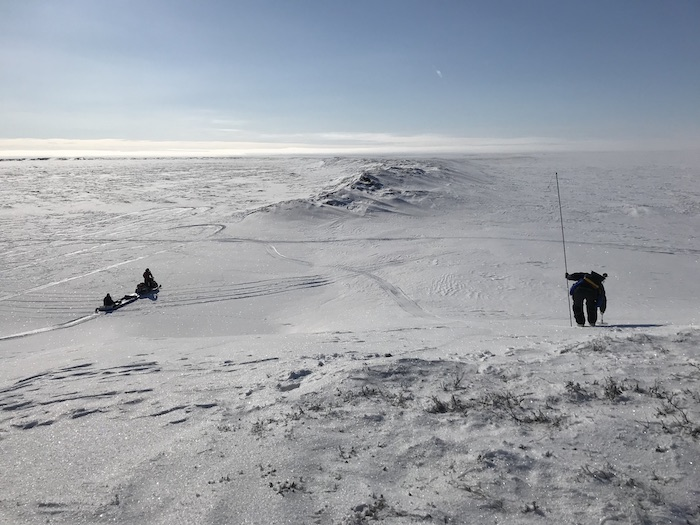 Figure 3. Conducting snow and near-surface geophysical surveys at a drained lake basin outlet. Photo courtesy of Benjamin M. Jones.