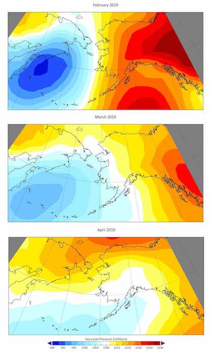 Figure 2. Monthly mean surface sea level pressure across the Bering Sea in February, March, and April 2019. Figure source: NCEP/NCAR Reanalysis.