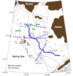 This map shows the locations of some of the samples taken during one of the BEST/BSIERP cruises.