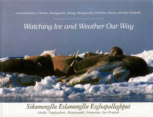 Watching Ice and Weather Our Way