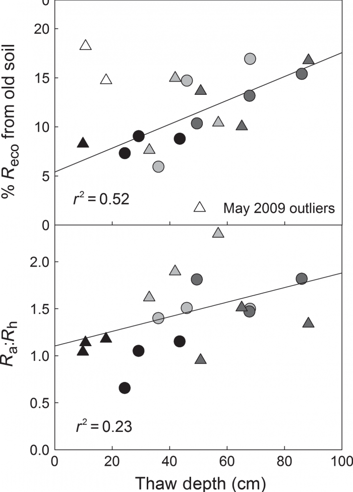 Figure 4. Relationship between increasing thaw depth and old carbon in ecosystem respiration at the Permafrost Thaw Gradient. Image courtesy of Hicks-Pries et al.