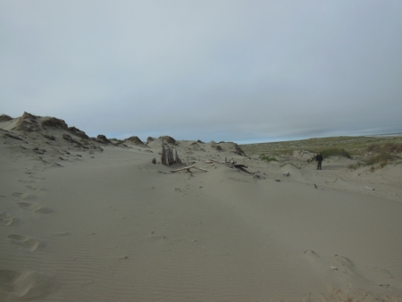 Figure 4. Historic structure eroded by wind and exposed in active dune system.  Photo by Shelby Anderson 2013.