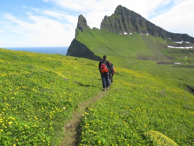 Figure 2. The Hornstrandir Nature Reserve in Westfjords, Iceland is increasingly popular as a nature tourist destination. Photo courtesy of Juliann Schamel.