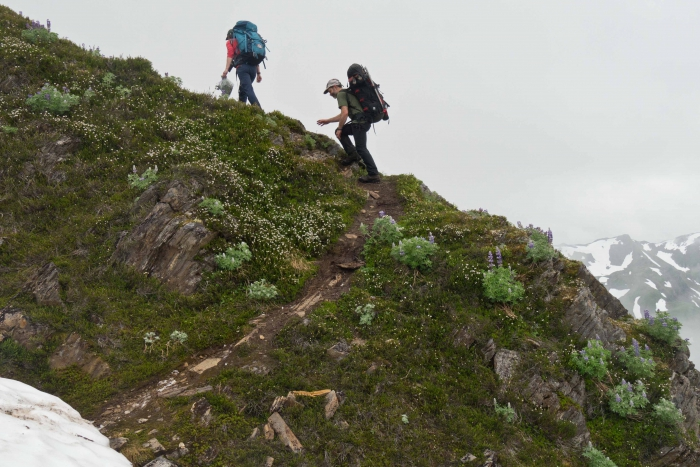 JIRP faculty members Drs. Catharine White (Northwest Community College) and Jeremy Littell (USGS), ascend Blackerby Ridge towards camp after a day-long outing to explore alpine ecology, and dendrochronology with a team of JIRP students. Photo courtesy of Matt Beedle