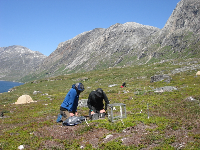 Figure 3: Field work in the Nuuk area, Greenland. Researchers collect ongoing gas exchange measurement. Photo courtesy of Magnus Kramshøj.