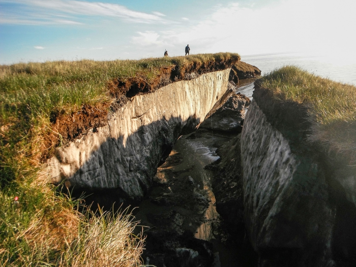 Coastal erosion reveals the extent of ice-rich permafrost underlying the active layer on the Arctic Coastal Plain in the Teshekpuk Lake Special Area of the National Petroleum Reserve - Alaska. Photo courtesy of Brandt Meixell, USGS.