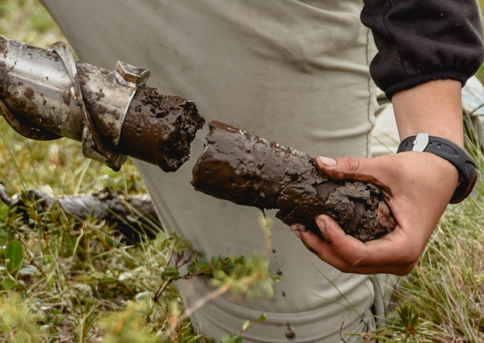 Soil samples are important stores of information on how warming temperatures and wildfires are altering the geochemistry of the Arctic. Photo courtesy of  John Schade.