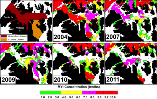 Figure 1. Spatial distribution of multi-year ice concentration