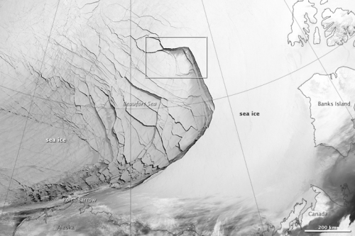 Figure 4. Sea ice fracture 23 February 2013 in the Beaufort Sea  (NASA).
