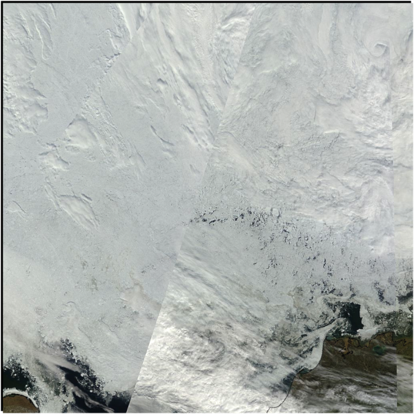 Figure 8. Visible true color mosaic of the Beaufort/Chukchi region near Barrow, Alaska, for 15 July from the NASA MODIS sensor. Barrow, Alaska is the point of land in the lower right corner of the image. North is roughly in the direction of the upper right corner of the image.