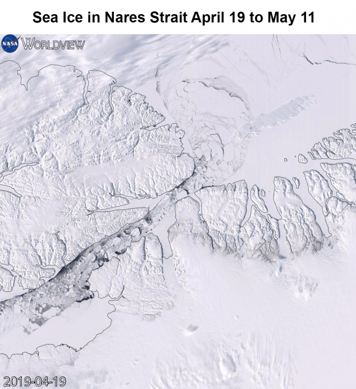 Figure 17. This NASA Worldview (download to view animation) image shows sea ice in the Nares Strait from 19 April to 11 May. A new Worldview functions creates an animation using Aqua Moderate Imaging Spectroradiometer (MODIS) true color composite images. Image courtesy of NASA.
