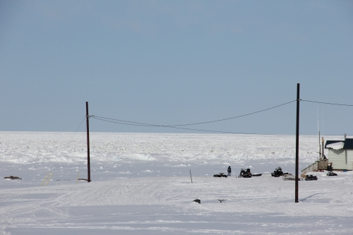 27 April 2014, the shorefast ice on the north coast off Savoonga, stretched beyond the horizon.