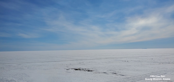 Nearshore ice conditions west of Brevig Mission - view 1.