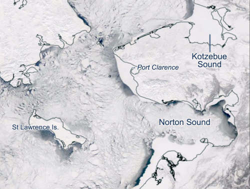 Figure 4. Sea ice in the Bering Sea on 29 March 2020 observed using MODIS satellite imagery. (Source: Imagery obtained from NASA Worldview)