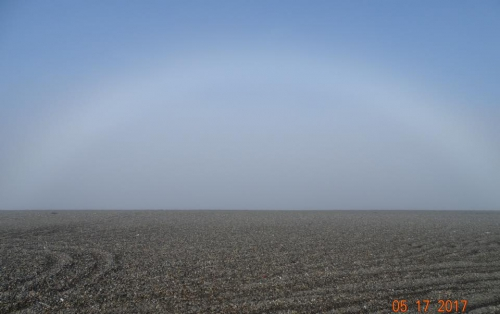 Gambell fogbow