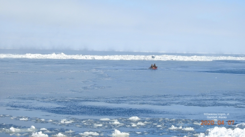 Nearshore ice conditions in Gambell.