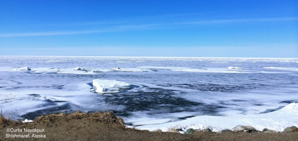 Nearshore ice conditions in Shishmaref looking north.