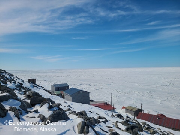 Sea ice conditions in Diomede - view 1.