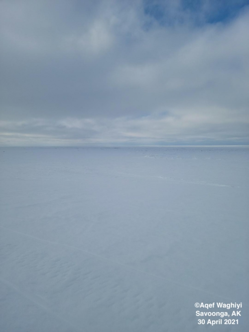 Sea ice and weather conditions in Savoonga - view 1.