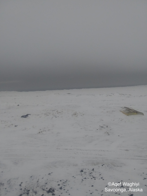 Nearshore ice conditions in Savoonga - view 1.