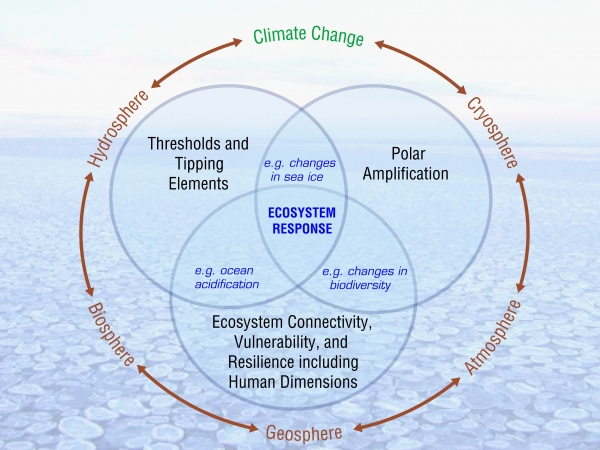 Image courtesy: Frontiers in Understanding Climate Change and Polar Ecosystems