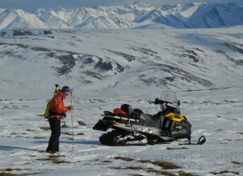 GPS enabled snow probe, SnowSTAR 2012