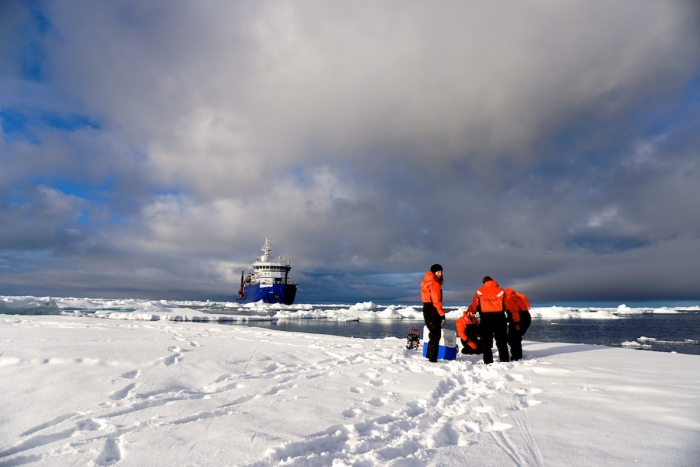 A Sikuliaq research team studied how changes in sea ice are impacting Arctic ecology and chemistry. They spent time on the ship during the summers of 2016 and 2017. Photo courtesy of Kim Kenny.