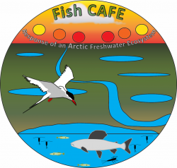 Figure 1. The Fish CAFE Project brings multiple sciences to bear upon understanding freshwater habitats of the Fish Creek Watershed in northern Alaska. Logo design: Ronnie Daanen. Image courtesy of the Fish Creek Watershed Observatory.