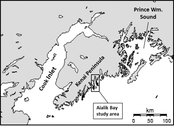 The southern Alaskan coast showing the location of the Aialik Bay archaeological study area. Image courtesy of A. Crowell.
