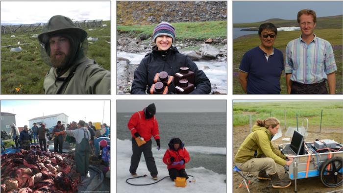 The six researchers highlighted in the Arctic Data Center's Dataset Highlights so far include Michael Ricketts, Rose Cory, Henry Huntington (left to right on top row) and James Fall, Karen Junge, and Kathy Kelsey (left to right on bottom row) and their research teams. Individual photos courtesy of each researcher.