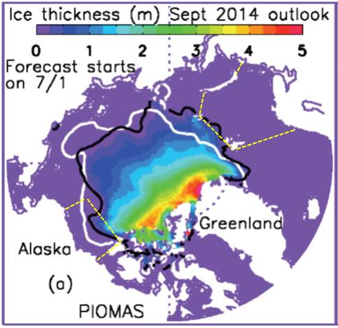 Figure 4. Ensemble median prediction of September 2014 ice thickness and September 2014 ice edge location (black) from PIOMAS and the September 2013 observed ice edge (white) [Zhang and Lindsay]. Regions outlined in yellow show the Beaufort Sea and Barents Sea sea ice areas used in the statistical predictions[Global Weather and Climate Logistics].
