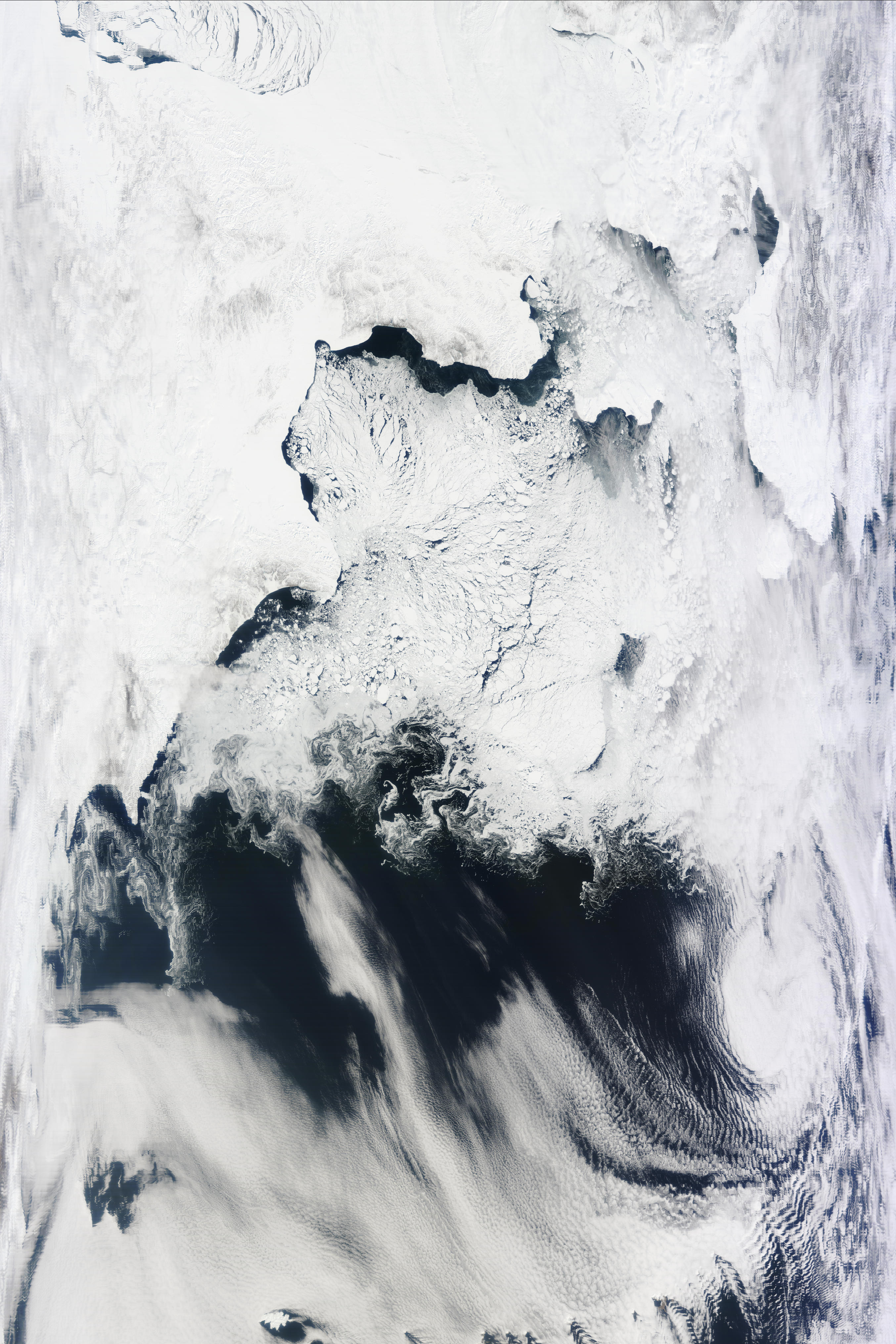 Bering Sea (Bering Straight and St. Lawrence Island in top-right quadrant)