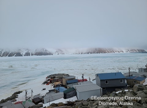 Sea ice conditions in Diomede on 12 May 2020 - view 4.