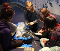 After their presentation on the IceCube observatory, Claire Hacker and Anna Caldwell-Overdier demonstrate cosmic-ray detector equipment to a couple of the Chilean students.  Photo courtesy of Lynn Foshee Reed.