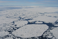 Figure 1. An areal view of loose Arctic pack ice in summer (August 2004) with open water patches, floe edges and ridges. Image courtesy of Torge Martin.