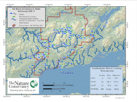 Figure 1. Map of streams near Iliamna with and without salmon. Image courtesy of The Nature Conservancy.