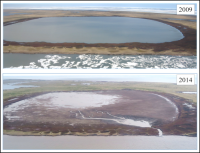 Figure 1. Example of a lake that drained on the North Slope of Alaska in early July 2014. Photo courtesy of Benjamin M. Jones.
