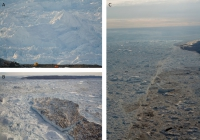 Photographs of ice mélange taken at Jakobshavn Isbræ, Greenland. (A) Iceberg clasts can range in size from decimeters to hundreds of meters. (B) In a dense ice mélange, no water is visible at the surface of the fjord. (C) Distinct shear bands are also visible in the ice mélange. Photo courtesy of Jason Amundson.