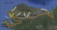 Figure 1. Map of recent beaver colonization in Arctic tundra of Alaska and northwestern Canada. Orange line approximates treeline, which was historically considered to be the range limit of beavers. Yellow arrows denote known beaver colonization routes since 1999. White arrows speculate future colonization routes and the plus signs indicate observed beaver ponds beyond treeline. Image courtesy of Tape et al.