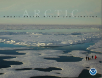 Arctic Vision and Strategy