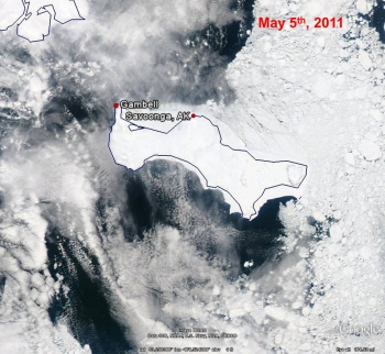 St. Lawrence Island Closeup