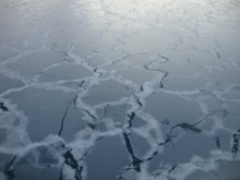 Thin sea ice forming in Chukchi Sea. Aboard the USCGC Healy icebreaker. Photo by Chantelle Rose (PolarTREC 2011)