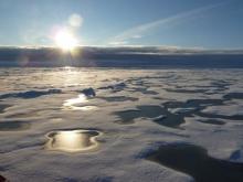2016 Polar Predictability Workshop