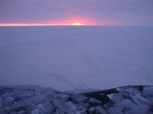 Sea Ice Prediction Network (SIPN) Webinar