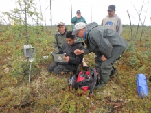 After installation of a soil temperature data logger unit, Edward Tiknor, Tribal Member (with laptop), gets hands-on training. Also included in photo: Alexander Kholodov (foreground), Adam Nikolai, Tribal Member (far left), Teresa Hanson, Environmental Director of Telida Village Council (back left), and Steven Nikolai, Jr., Tribal Member (back right). Photo courtesy of Santosh K. Panda, University of Alaska Fairbanks.