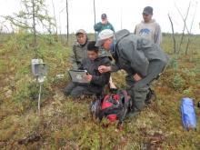 After installation of a soil temperature data logger unit, Edward Tiknor, Tribal Member (with laptop), gets hands-on training. Also included in photo: Alexander Kholodov (foreground), Adam Nikolai, Tribal Member (far left), Teresa Hanson, Environmental Director of Telida Village Council (back left), and Steven Nikolai, Jr., Tribal Member (back right). Photo courtesy of Santosh K. Panda, University of Alaska Fairbanks.