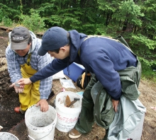 Sugpiaq research participants Dan Anahonak (l) and Forest Kvasnikoff (r) examine an artifact during excavations at the Early Contact Village site in Aialik Bay. Pacific cod otoliths found in this archaeological midden were used in the isotopic temperature study.. Image courtesy of A. Crowell.