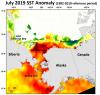 2019 Sea Ice Outlook Post-Season Report