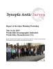 Synoptic Arctic Survey: Report of the Open Planning Workshop