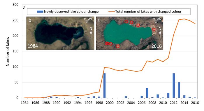 Figure 4. Lake color change due to retrogressive thaw slump activity: (a) Annually resolved time series of numbers of lakes visually changing color (from dark blue to turquoise or beige) observed for Banks Island (1984-2016) using Timelapse. (b) and (c) Individual lake color change from 1984 to 2016 due to retrogressive thaw slumps (marked by red circles) becoming active around the shoreline (73.08°N 117.67°W).